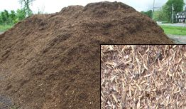 Shredded Pine Mulch Currently unavailable