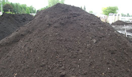 Black Peat Loam