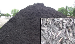 Black Beauty Mulch (True Black Hardwood)